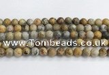 CAA2351 15.5 inches 10mm round crazy lace agate beads wholesale