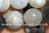CAA3577 15.5 inches 8mm round parral dendrite agate beads