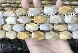 CAA3712 15*22mm - 16*25mm faceted nuggets chrysanthemum agate beads