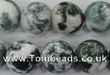 CAA705 15.5 inches 16mm round tree agate gemstone beads wholesale