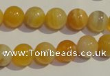 CAA91 15.5 inches 14mm round botswana agate gemstone beads