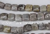 CAG1439 15.5 inches 8*8mm square bamboo leaf agate beads