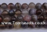 CAG5951 15.5 inches 6mm round botswana agate beads wholesale