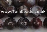CAG5955 15.5 inches 14mm round botswana agate beads wholesale