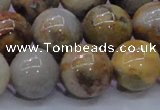 CAG6677 15.5 inches 18mm round natural crazy lace agate beads