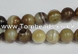 CAG938 16 inches 10mm round madagascar agate gemstone beads