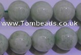 CAM756 15.5 inches 16mm round natural amazonite gemstone beads