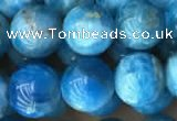 CAP590 15.5 inches 10mm round apatite beads wholesale
