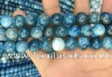 CAP602 15.5 inches 12mm round natural apatite beads wholesale