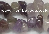 CCH291 34 inches 8*12mm amethyst chips gemstone beads wholesale