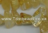 CCH292 34 inches 8*12mm citrine chips gemstone beads wholesale