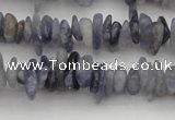 CCH658 15.5 inches 4*6mm - 5*8mm iolite gemstone chips beads