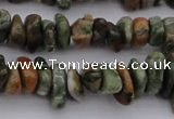 CCH662 15.5 inches 5*8mm - 6*10mm rhyolite gemstone chips beads