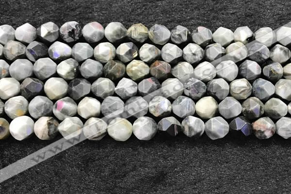 CEE532 15.5 inches 10mm faceted nuggets eagle eye jasper beads