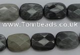 CEE81 15.5 inches 12*16mm faceted rectangle eagle eye jasper beads