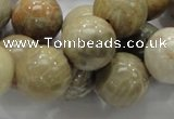 CFA04 15.5 inches 16mm round chrysanthemum agate gemstone beads