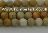 CFC221 15.5 inches 6mm round matte fossil coral beads wholesale