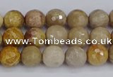 CFC229 15.5 inches 6mm faceted round fossil coral beads