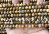 CFC321 15.5 inches 6mm round fossil coral beads wholesale