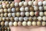 CFC323 15.5 inches 10mm round fossil coral beads wholesale