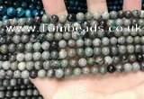 CGJ510 15.5 inches 4mm round green forst jasper beads wholesale