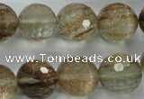 CGQ30 15.5 inches 20mm faceted round gold sand quartz beads