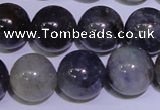 CIL05 15.5 inches 10mm round natural iolite gemstone beads
