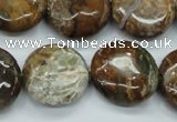 CJA26 15.5 inches 20mm flat round green jasper beads wholesale