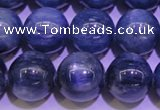 CKC406 15.5 inches 10mm round A grade natural blue kyanite beads
