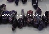 CKU52 15.5 inches 6*12mm - 9*27mm purple kunzite chips beads