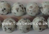 CKW06 15.5 inches 16mm round kiwi jasper gemstone beads