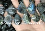 CLB1001 15.5 inches 18*30mm - 22*35mm flat teardrop labradorite beads