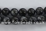CLB353 15.5 inches 10mm round black labradorite beads wholesale