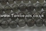 CMS1071 15.5 inches 6mm round grey moonstone beads wholesale