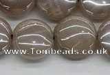 CMS1348 15.5 inches 12mm flat round AB-color moonstone beads