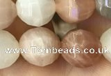 CMS1472 15.5 inches 10mm faceted round moonstone beads wholesale