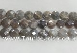 CMS1792 15.5 inches 16mm faceted coin AB-color moonstone beads