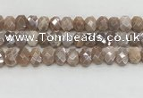 CMS1838 10*12mm - 12*16mm faceted freeform AB-color moonstone beads