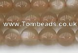 CMS1956 15.5 inches 5mm round natural moonstone gemstone beads