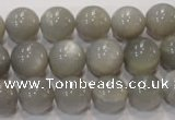CMS307 15.5 inches 12mm round natural grey moonstone beads wholesale