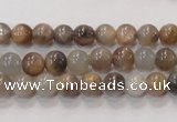 CMS310 15.5 inches 6mm round natural moonstone beads wholesale