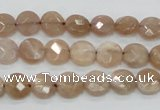 CMS43 15.5 inches 8mm faceted coin moonstone gemstone beads