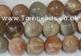 CMS505 15.5 inches 12mm round moonstone beads wholesale