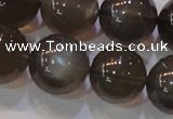 CMS855 15.5 inches 14mm round natural black moonstone beads