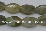 CNG5253 15.5 inches 13*18mm - 15*20mm faceted freeform labradorite beads