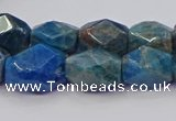 CNG5926 15.5 inches 10*14mm - 12*16mm faceted nuggets apatite beads