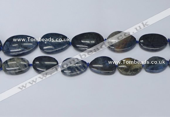 CNG7116 15.5 inches 20*25mm - 30*40mm freeform blue dumortierite beads