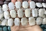 CNG7764 13*18mm - 15*25mm faceted freeform grey moonstone beads