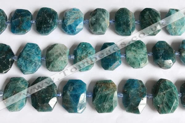 CNG7787 15.5 inches 13*18mm - 15*25mm faceted freeform apatite beads
