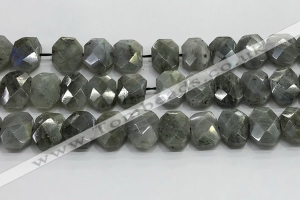 CNG8622 10*13mm - 12*16mm faceted freeform labradorite beads